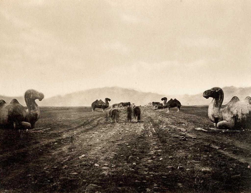Những bức ảnh quý giá hiếm hoi về triều đại cuối cùng của Trung Quốc thế kỷ 19. 5