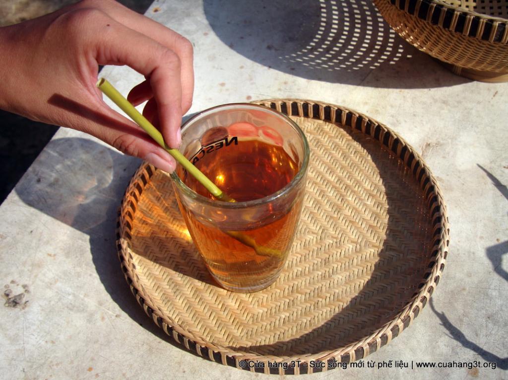 lost bird ong hut co giai phap bao ve moi truong 8
