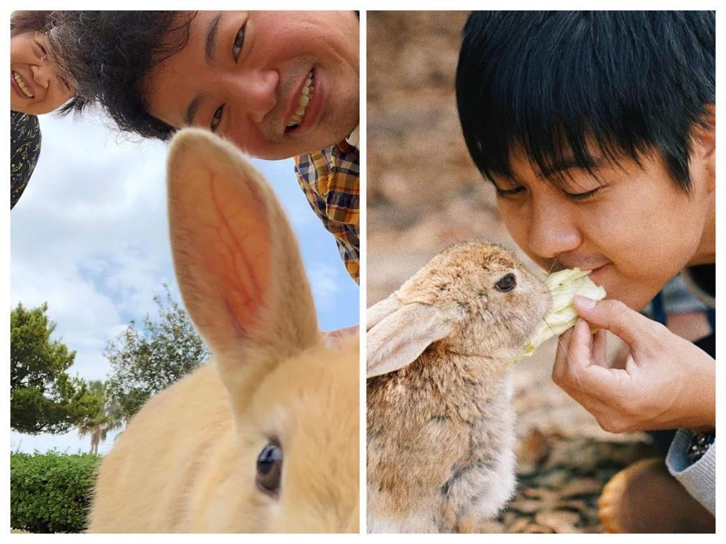 Không chỉ có đảo mèo, Nhật Bản còn có đảo thỏ khiến bạn đắm chìm trong sự dễ thương