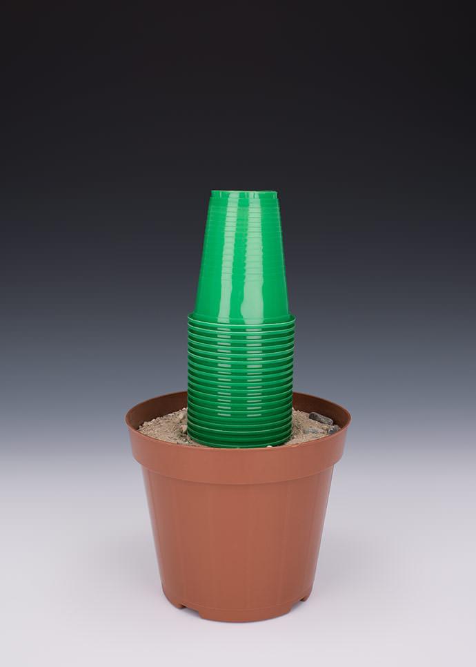 Một khu vườn chỉ toàn... đồ nhựa???