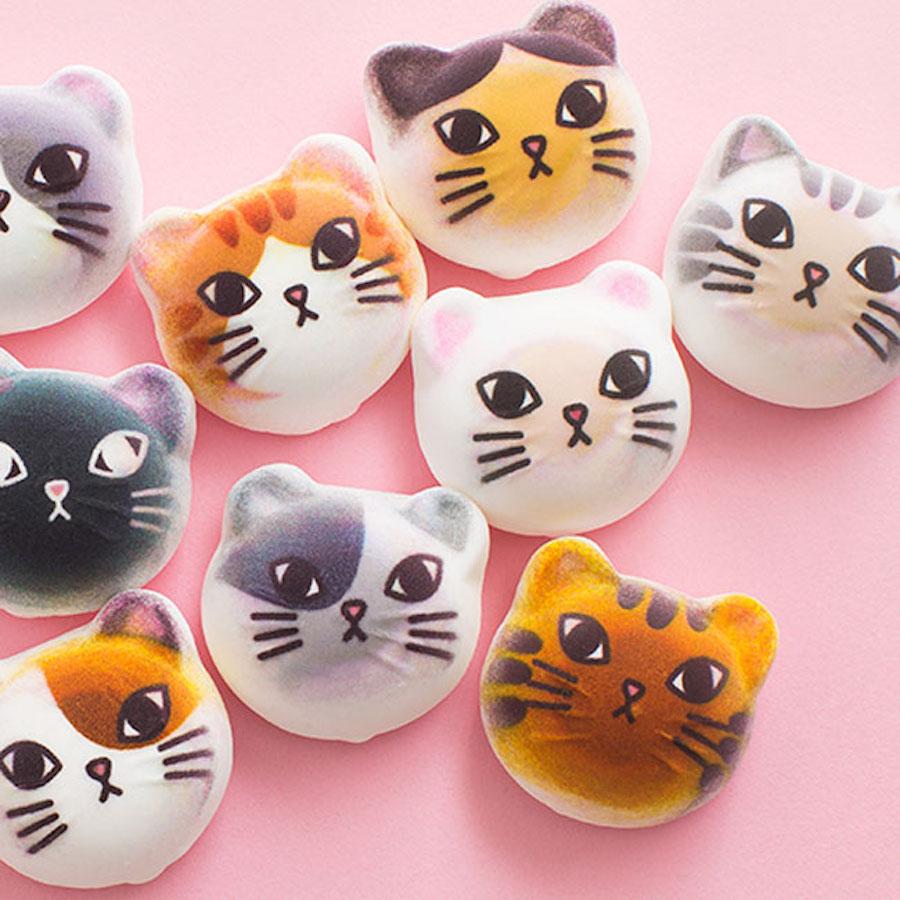 Mềm mềm, thơm thơm và 'siêu cấp' đáng yêu: chính là kẹo marshmallow mèo