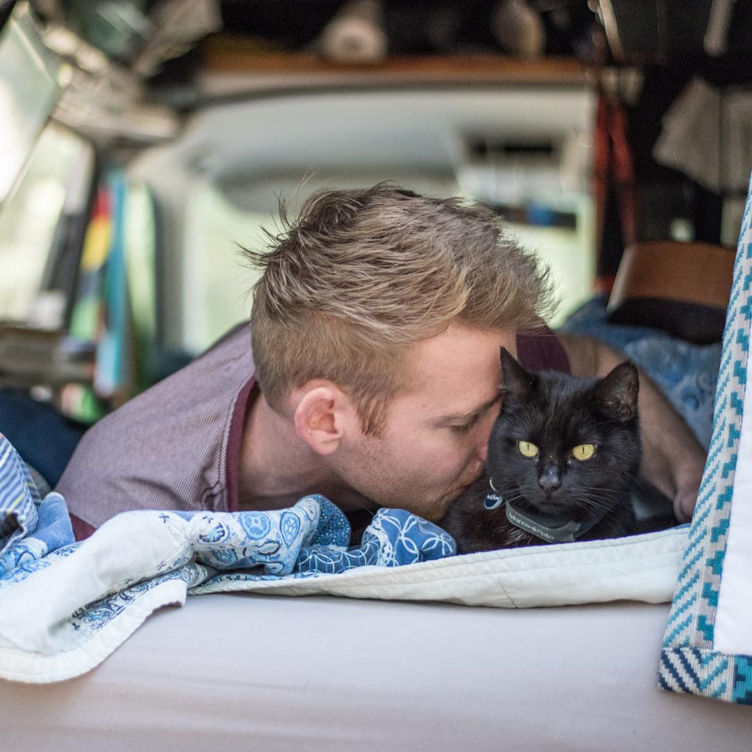 Bỏ việc, bán nhà để đi du lịch cùng mèo cưng vì... chán đời