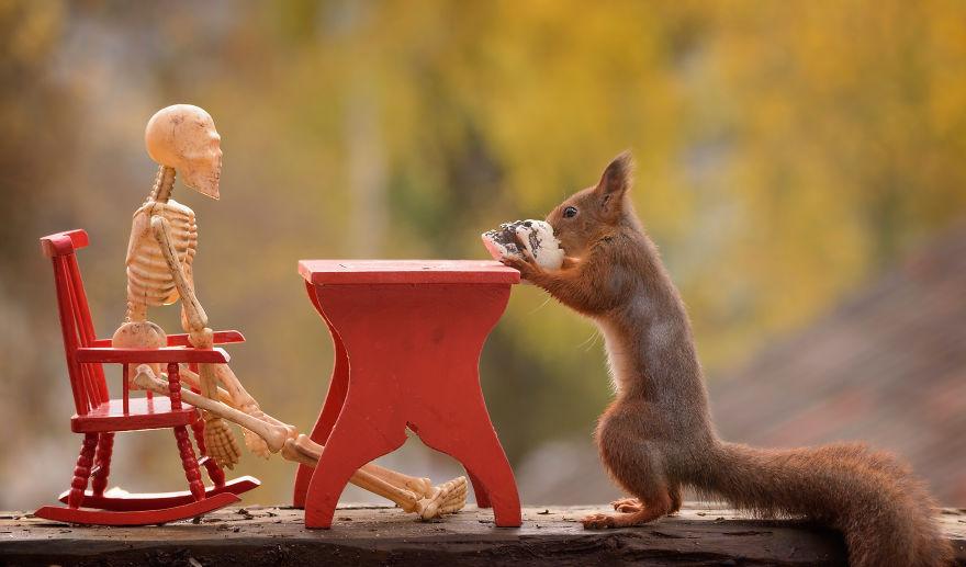'Tình sóc duyên ma' - Bộ ảnh Halloween chất chơi của chú sóc nhỏ