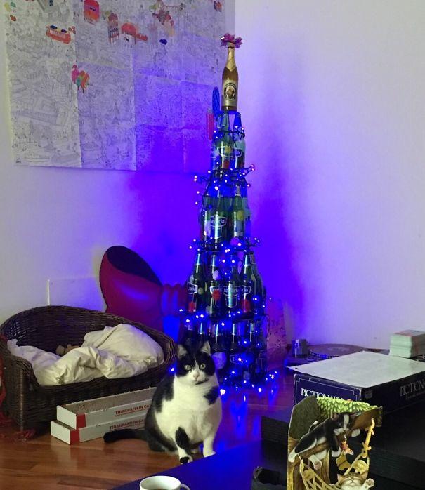 Báo động: Đến mùa bảo vệ 'tính mạng' cây thông Noel khỏi lũ thú cưng rồi!