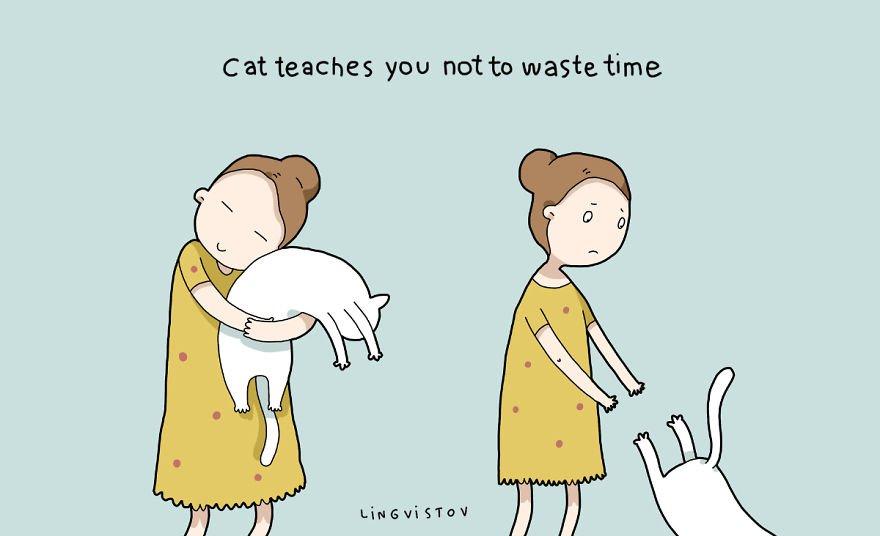 Mèo - Động vật 'đa năng' nhất quả đất