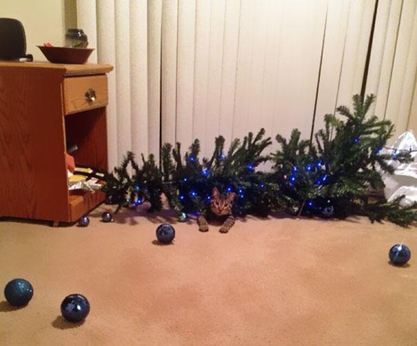 Tập đoàn mafia không ngần ngại ra tay 'thủ tiêu' lễ Giáng Sinh