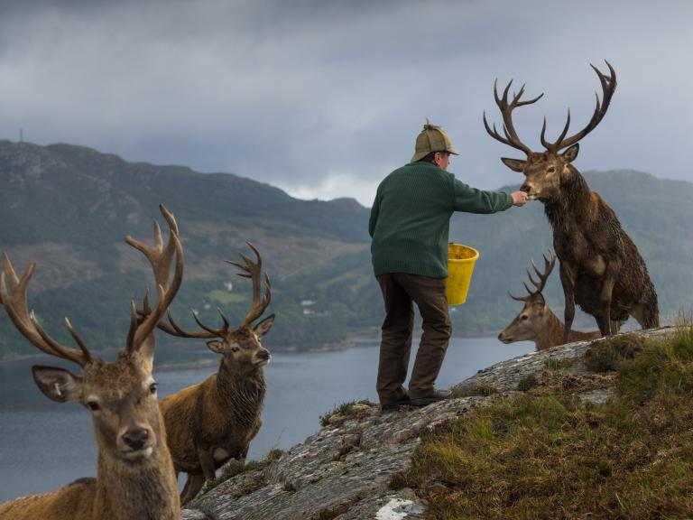 Năm 2017 qua lăng kính của các nhiếp ảnh gia hàng đầu National Geographic