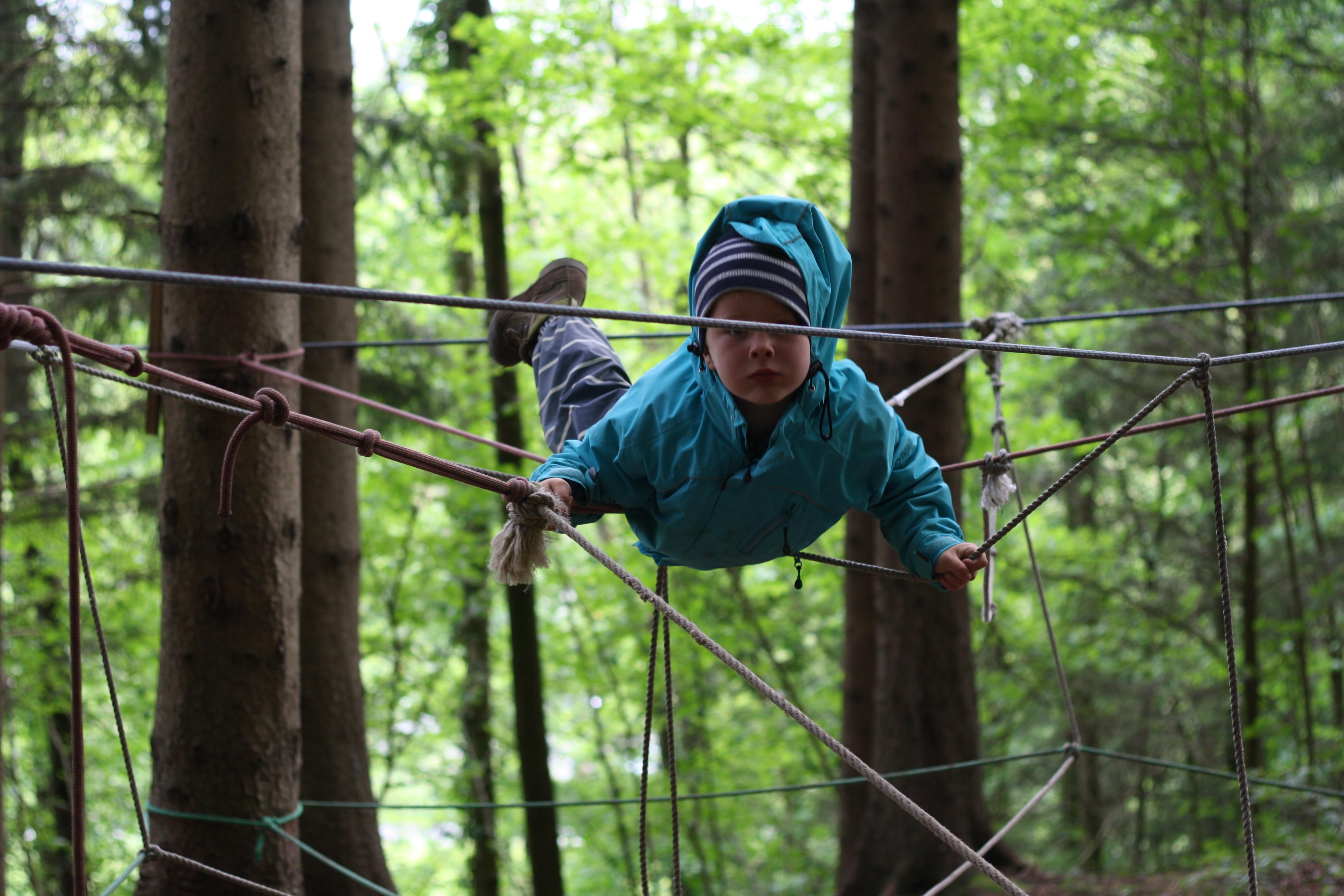 Học mẫu giáo... trong rừng: Không tốn giấy mực, không lo điểm số