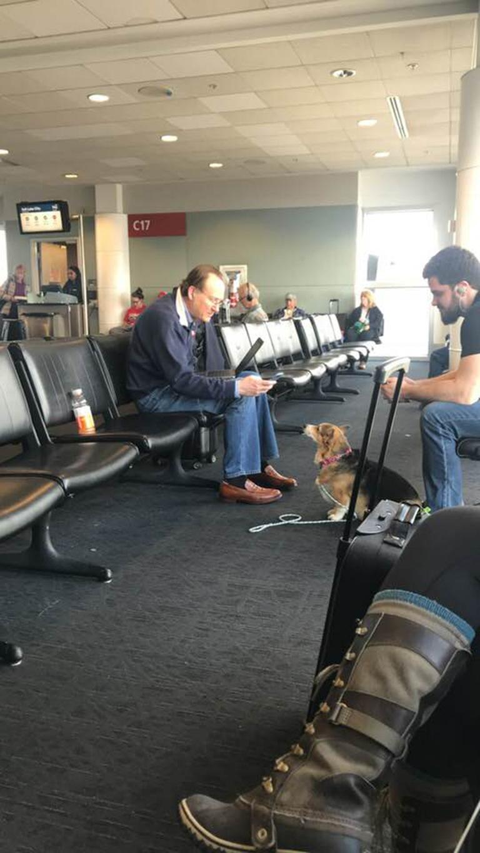 Chú chó 'đánh hơi' được nỗi buồn và an ủi người đàn ông xa lạ
