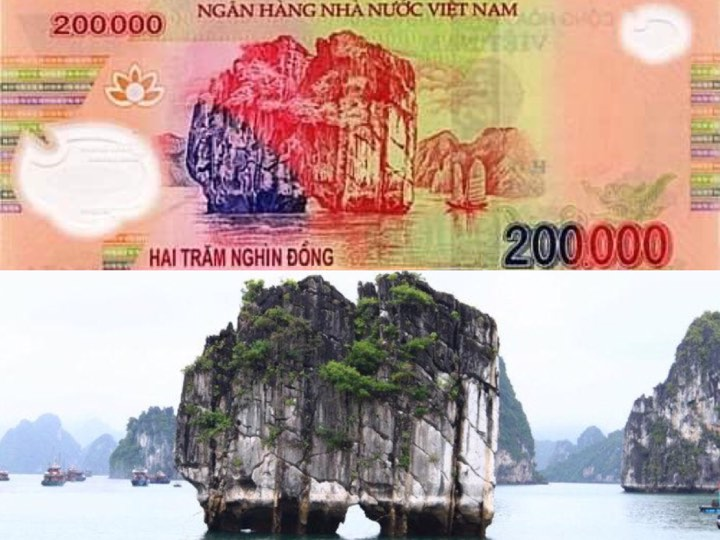 Có bao giờ bạn cầm đồng tiền Việt Nam và tự hỏi: Hình vẽ trên đó ở đâu ra?