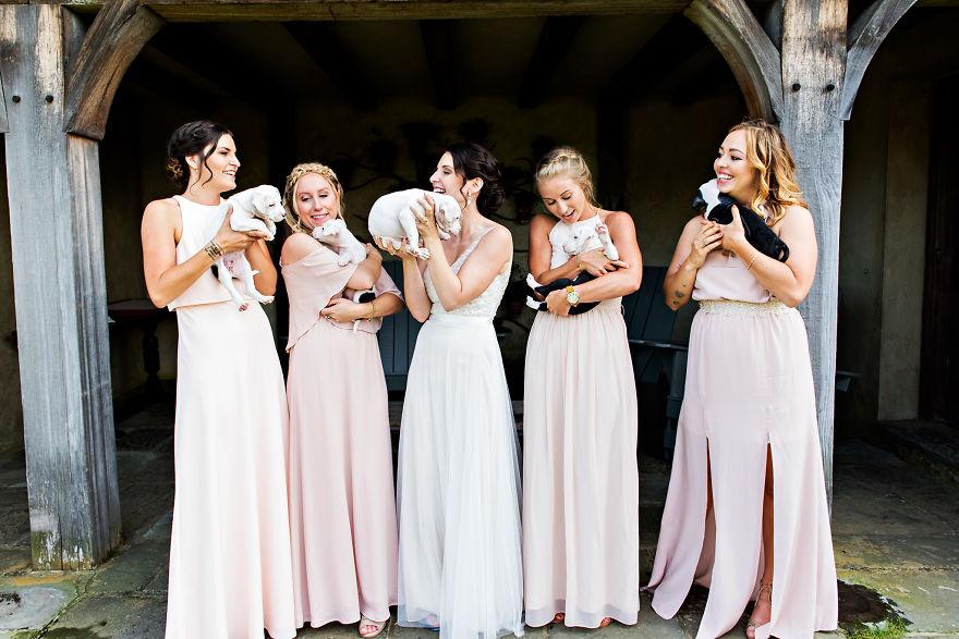 Thay vì hoa cưới, cô dâu chú rể quyết định mang cún cưng đến ngập lễ đường