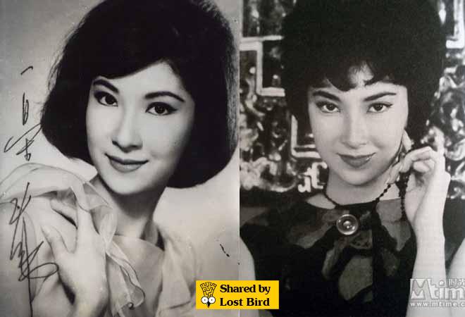 5 mỹ nhân TVB nổi tiếng thế kỷ 20: Nhan sắc hoàn hảo chẳng cần phẫu thuật thẩm mỹ