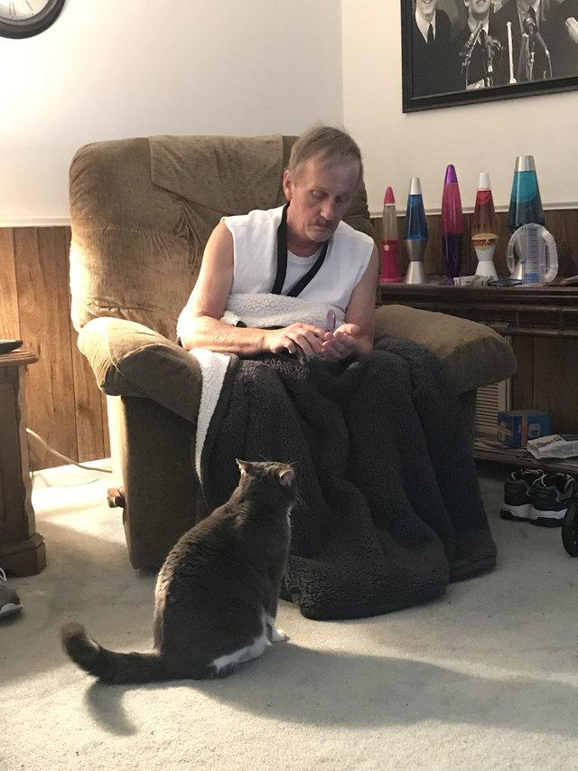 Cô mèo báo động cả nhà khi phát hiện ông chủ lên cơn đau tim