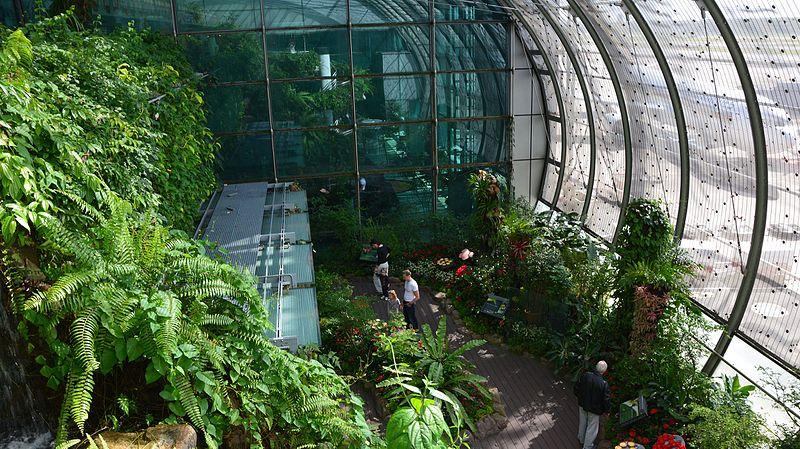 Chuyện chỉ có ở Singapore: Biến sân bay thành điểm du lịch