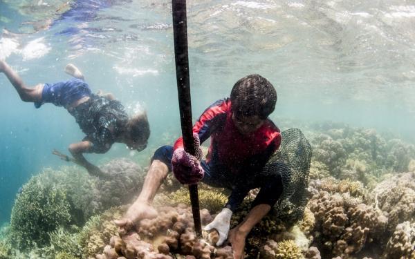 Bajau - Bộ tộc du mục biển cuối cùng trên thế giới