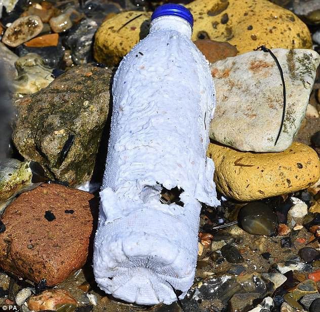 Phát minh mới: Chai nước có thể tự phân hủy sau 3 tuần, cá ăn vào vẫn an toàn