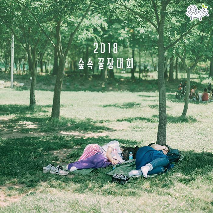 Dù lười đến mấy thì chắc chắn bạn cũng sẽ thích tham gia cuộc thi 'Ai ngủ lâu nhất trong rừng' chỉ có ở Hàn Quốc