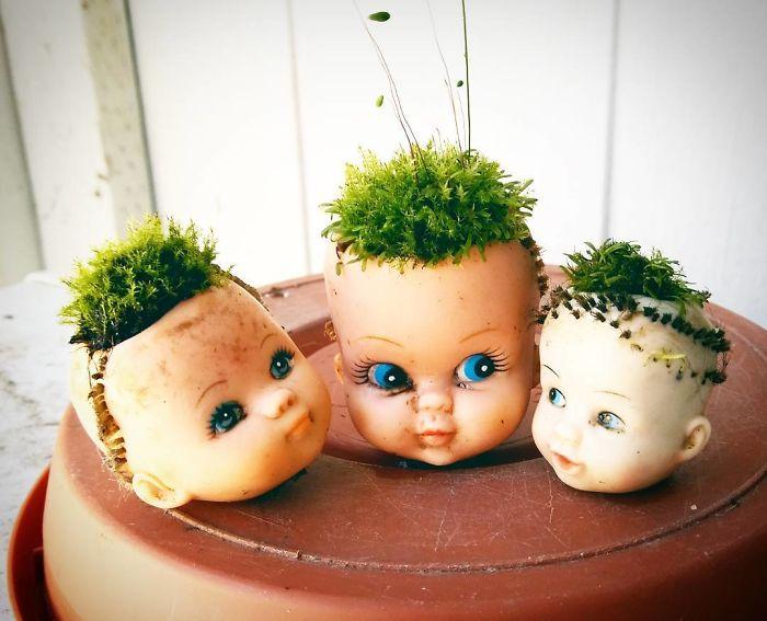 Thú vị trào lưu trồng cây cảnh theo phong cách 'Annabelle'