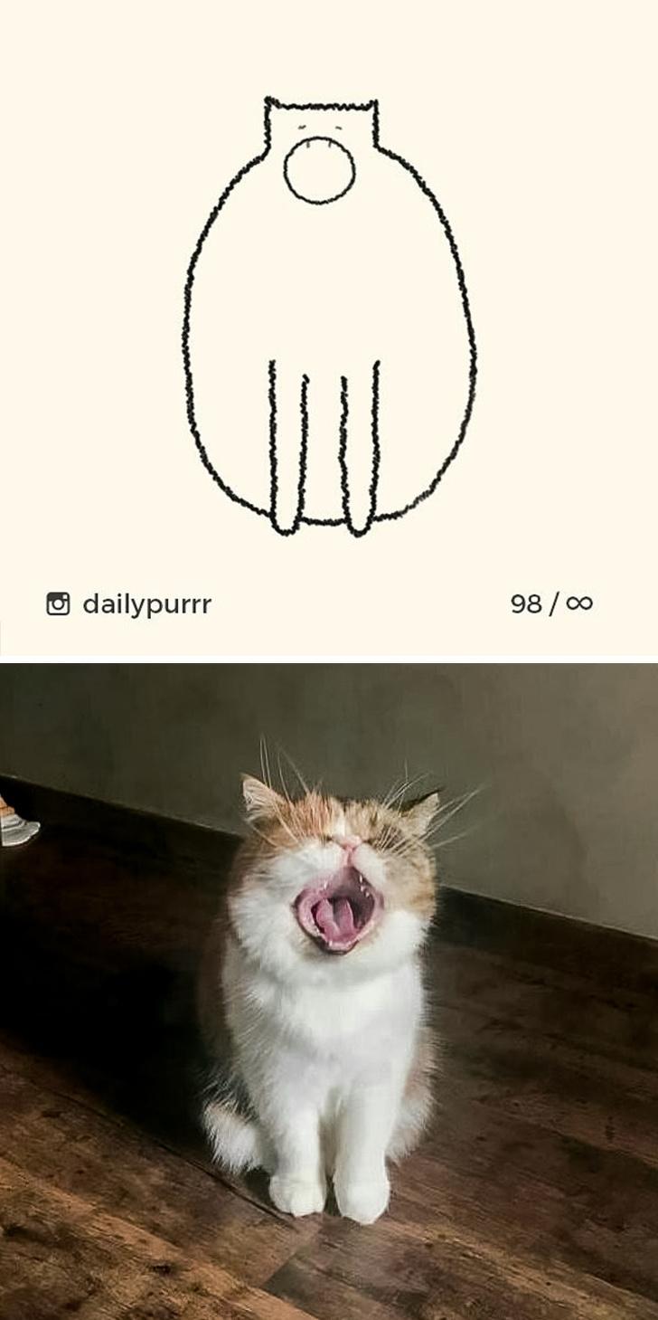 Dạy cách vẽ mèo chỉ với vài nét nhưng chuẩn xác đến từng cen-ti-mét