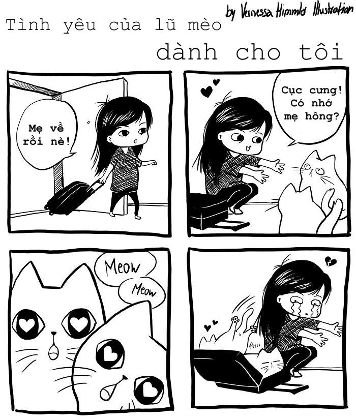 Bộ ảnh miêu tả chân thực cuộc sống của lũ mèo nhà bạn (P2)