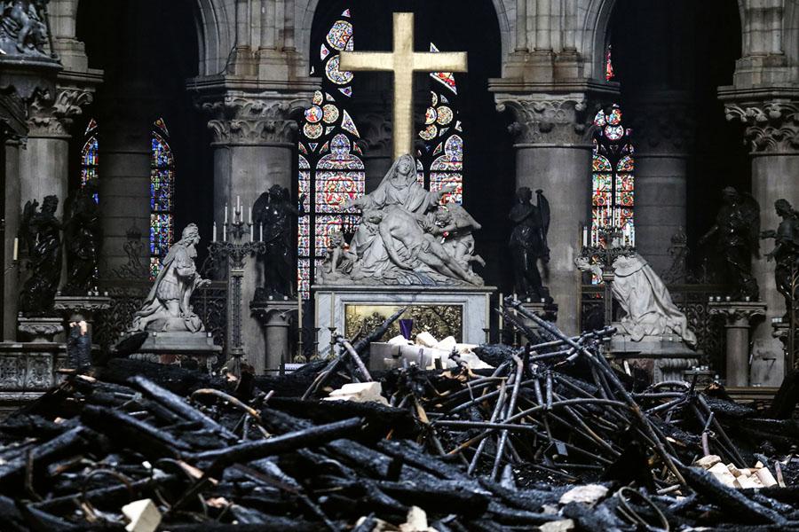 Nước Pháp không còn cây đủ chiều cao để phục dựng lại phần mái của Nhà thờ Đức Bà Paris