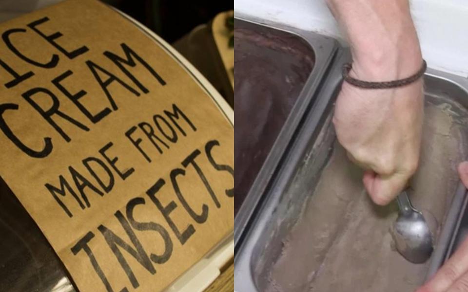 Bạn có dám thử ăn cây kem làm từ... giòi này không?