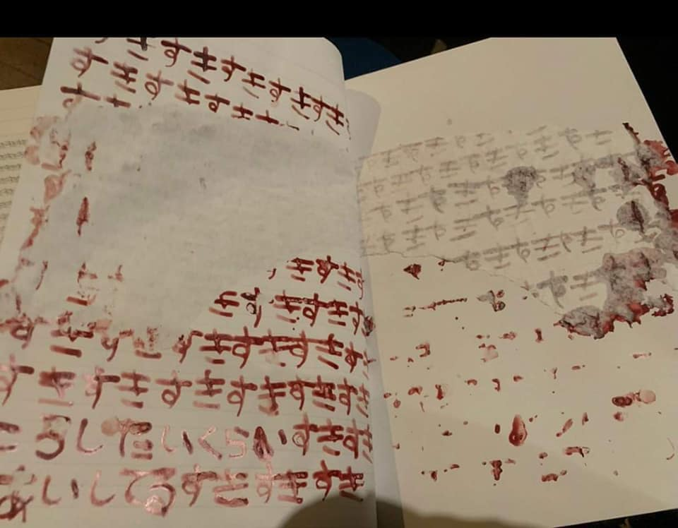 Danh tính người bạn trai xấu số và cuốn nhật kí bằng máu của nữ sát nhân giết người vì cuồng yêu