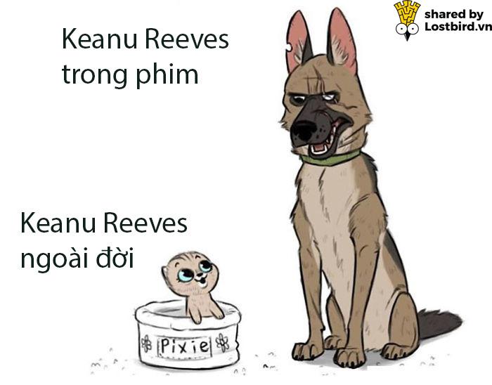 Tuyển tập meme về chàng diễn viên ai cũng yêu quý - Keanu Reeves