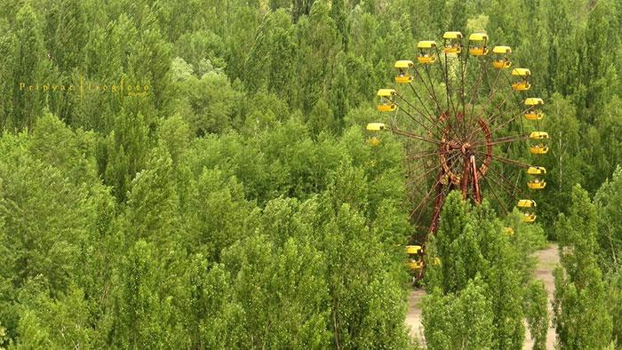 Sau thảm hoạ Chernobyl, Mẹ Thiên nhiên vẫn có cách cứu vớt những 'đứa con' của mình