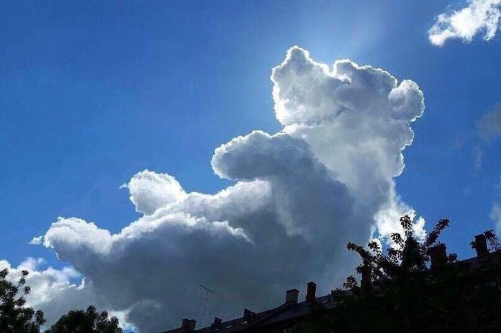 Đã bao giờ bạn nhìn lên bầu trời và phát hiện ra 'thông điệp' của những đám mây?