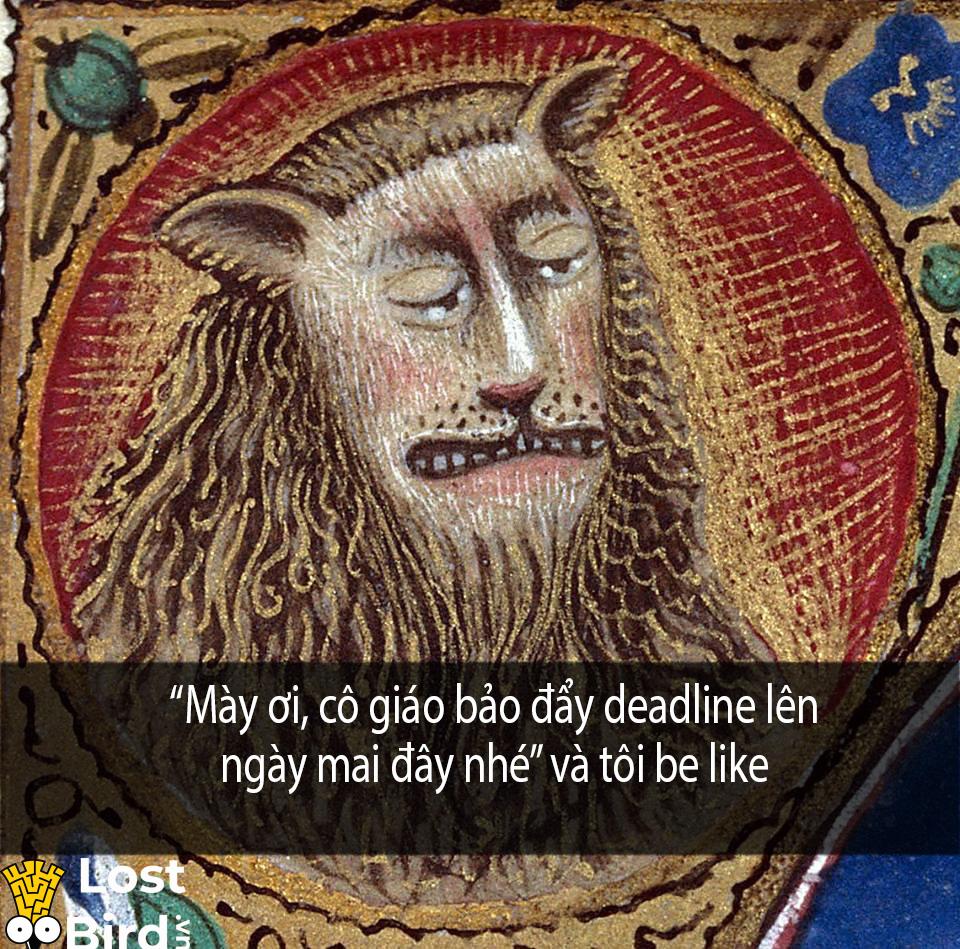 Tuyển tập meme sư tử Trung cổ hài hước khiến bạn phải ngay lập tức lưu về máy