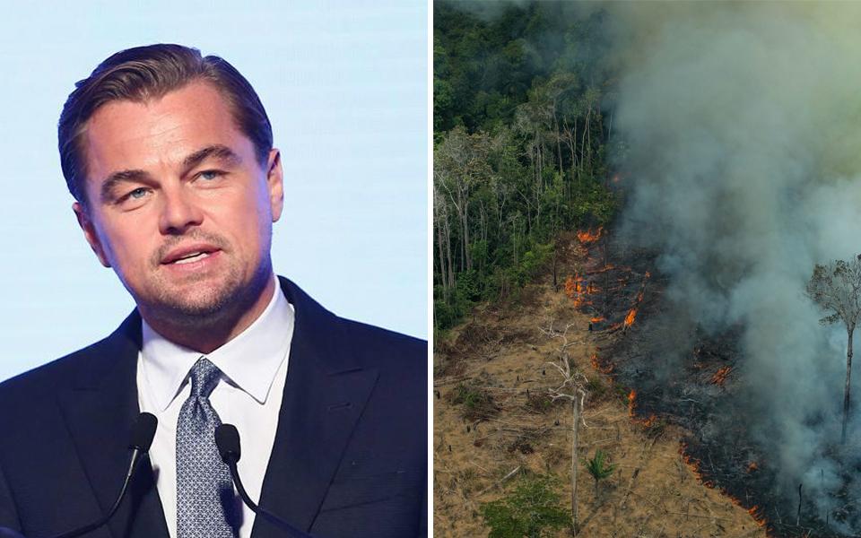 Liên minh Trái Đất của Leonardo DiCaprio quyên góp 5 triệu USD cho công tác chữa cháy rừng Amazon
