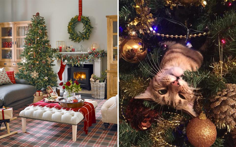 Khoa học chứng minh trang trí Giáng Sinh sớm sẽ khiến hạnh phúc nhân lên gấp nhiều lần