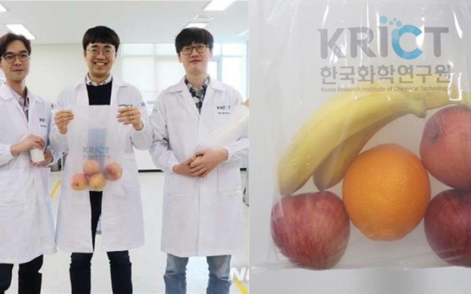 Nhà khoa học Hàn Quốc phát minh 'túi nhựa' được làm từ vỏ cua để cứu sống môi trường