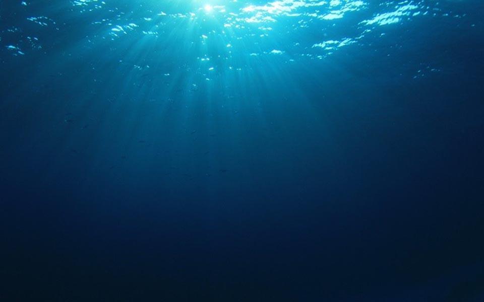 18 trải nghiệm kinh dị ở dưới đáy biển