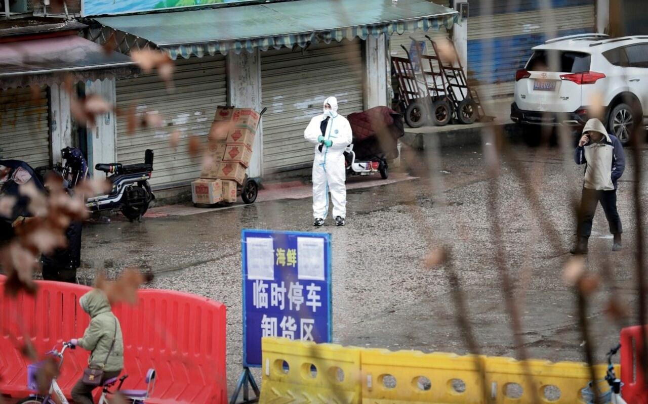 Trung Quốc cấm bán động vật sống khi virus corona bùng phát ở Vũ Hán