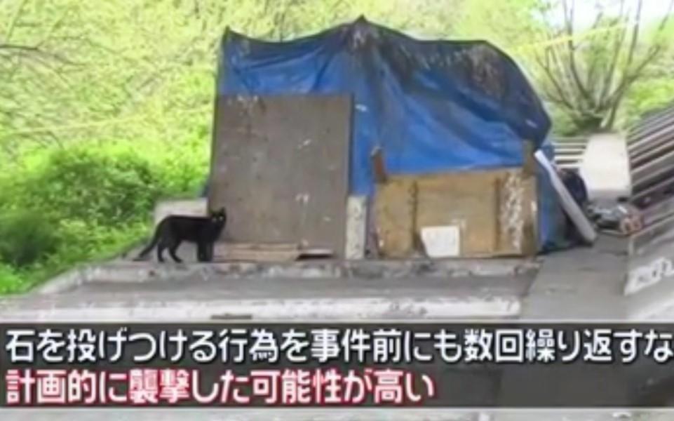 Nhật Bản: Ông lão vô gia cư yêu mèo bị nhóm sinh viên ném đá đến chết