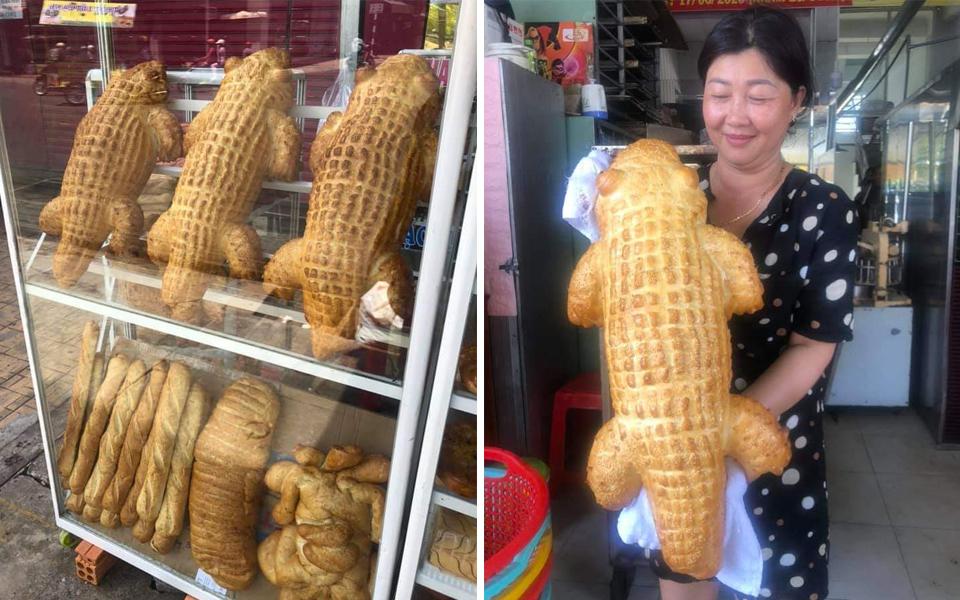 Lò bánh mì An Giang bất ngờ nổi tiếng nhờ những bé cá sấu siêu khổng lồ ăn một con no cả tháng
