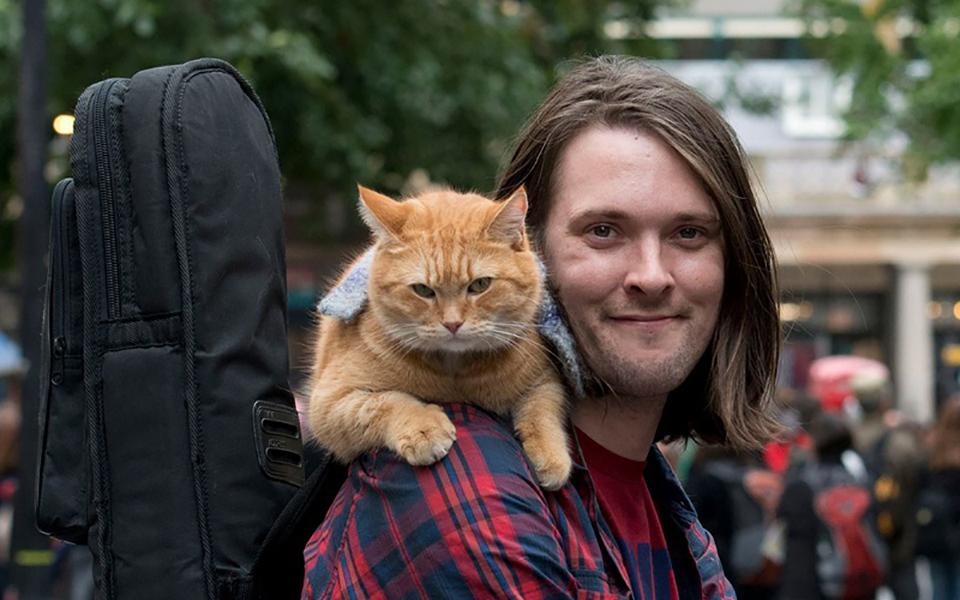 Chú mèo đường phố Bob nổi tiếng, nguyên mẫu của phim 'A Street Cat Named Bob' qua đời ở tuổi 14
