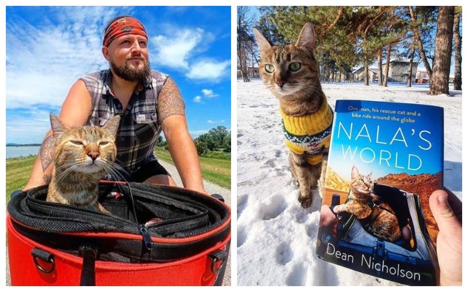 Nala - bé mèo được chủ đưa đi xe đạp vòng quanh thế giới, có 777.000 lượt theo dõi trên Instagram