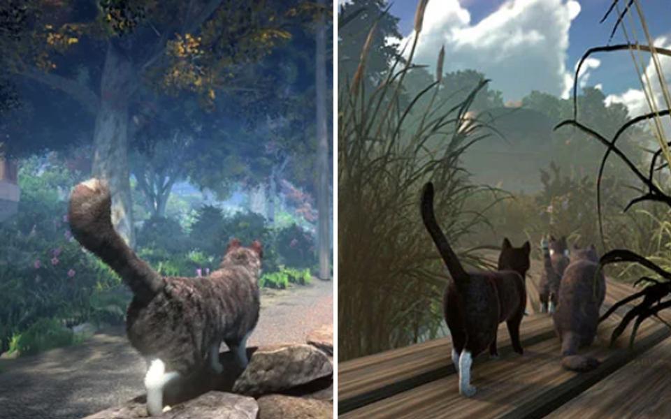 Game cho phép bạn hoá thân thành... mèo hoang sống trên đảo