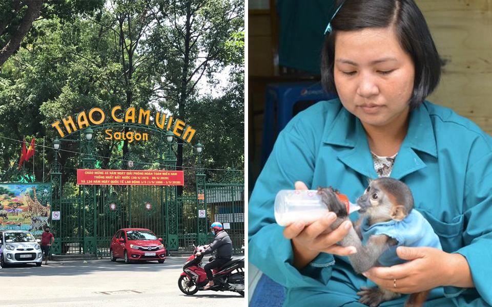 300 nhân viên Thảo Cầm Viên đồng lòng giảm 30% lương để giúp vườn thú chống chịu qua đại dịch