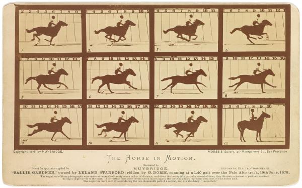 time 100 influential photos eadweard muybridge horse motion 7