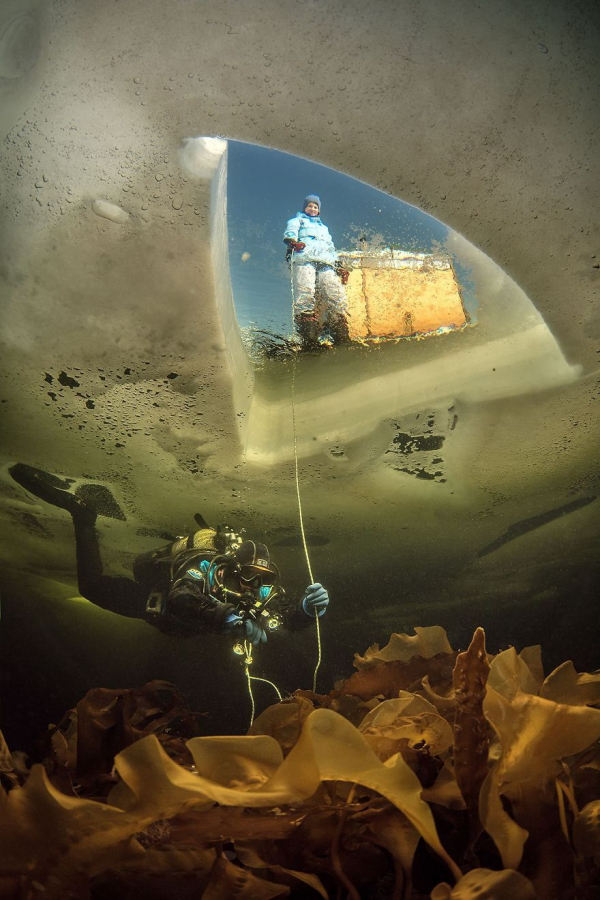 national geographic nature photographer of the year 2018 winner 40 5c0a35ce4a7b5 880