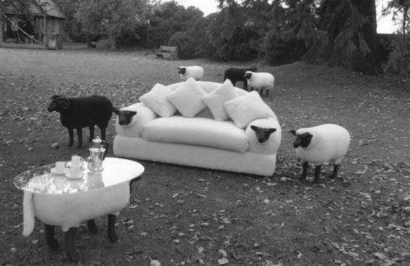strange couch
