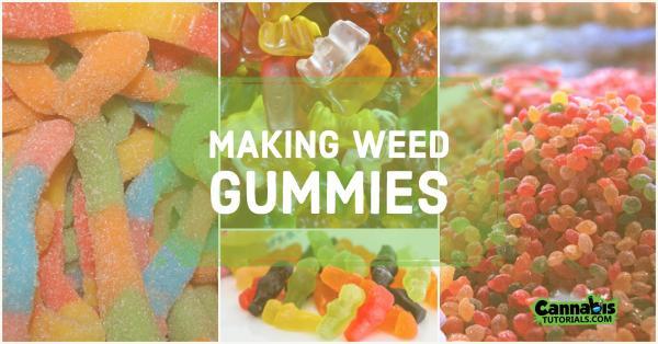 weed gummies ft