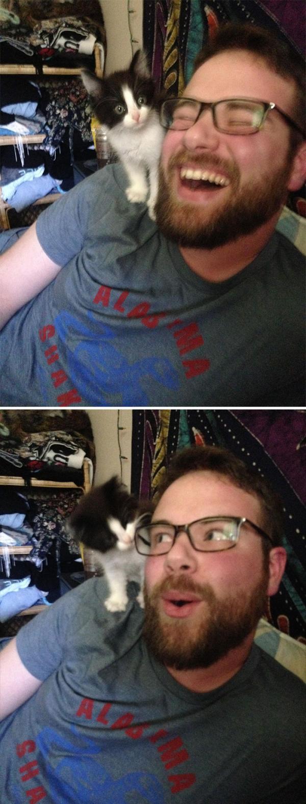 Ai nói cánh mày râu không thích mèo? Loạt ảnh này sẽ chứng minh điều ngược lại!