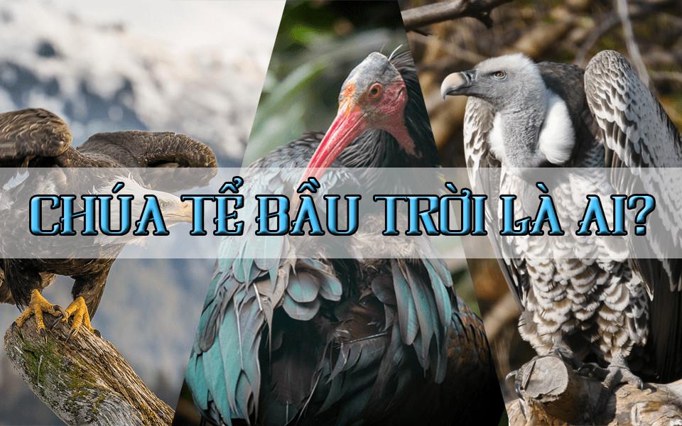 Những kỷ lục đáng kinh ngạc trong thế giới loài vật (Phần 3 - Động vật trên không)