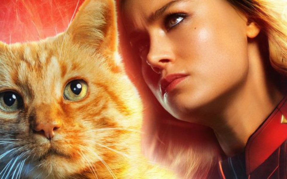 Captain Marvel bị đánh giá là một phim 'qua loa chiếu lệ' bởi giới phê bình