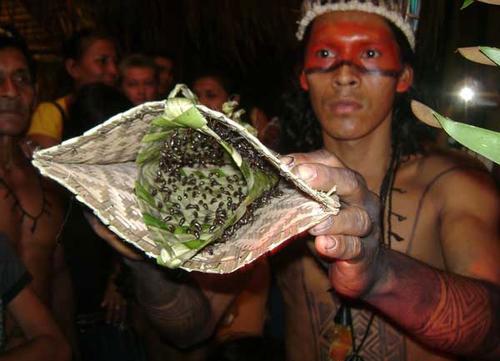 Các nghi lễ rùng rợn nhất thế giới: Ném trẻ sơ sinh xuống đất, để mặc người già chết đói giữa biển